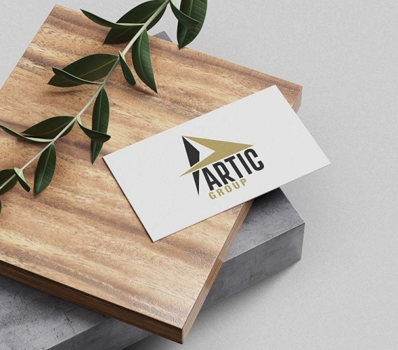 Artic Group